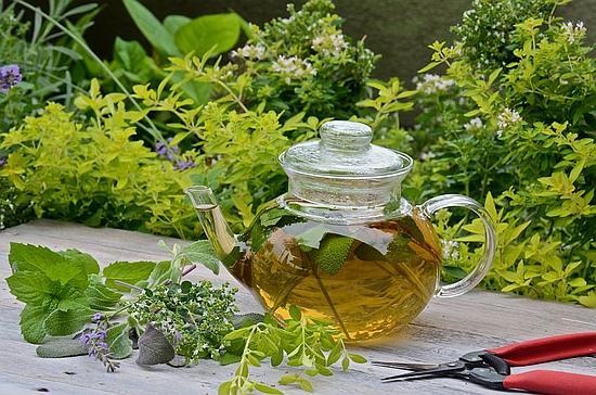 Травяной чай на даче